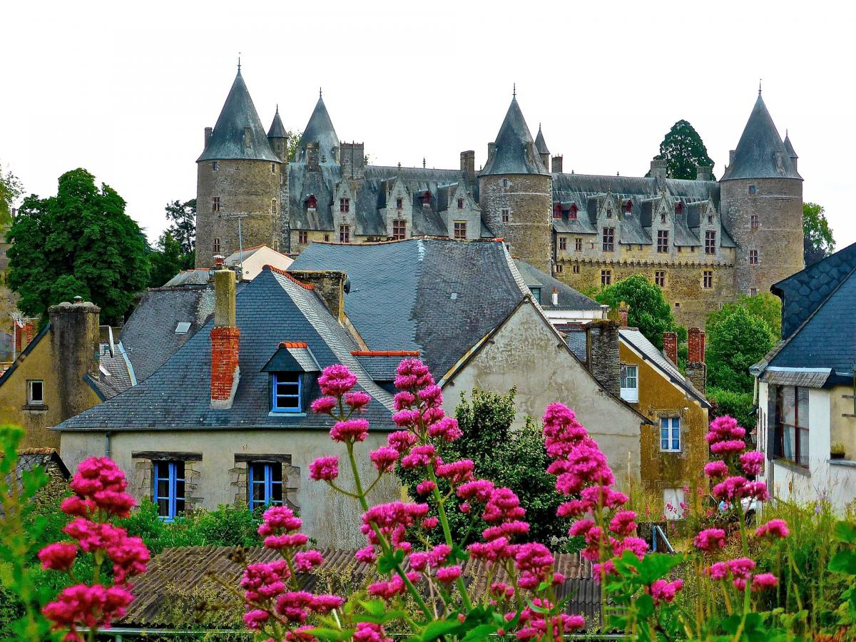 French chateau and town with flowers in the foreground