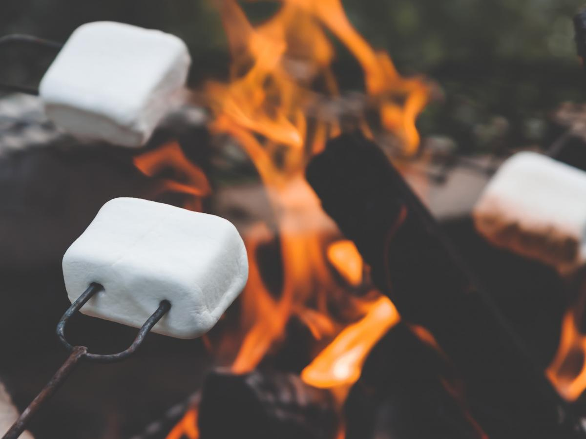 Marshmallows on toasting forks, above the flames.